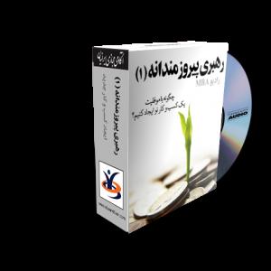 audiobook6