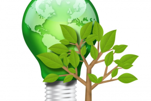go-green-green-management1.jpgytd